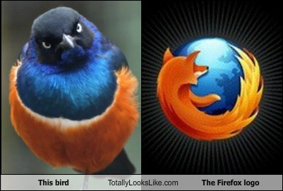 bird firefox funny Hall of Fame logo TLL - 5872354048