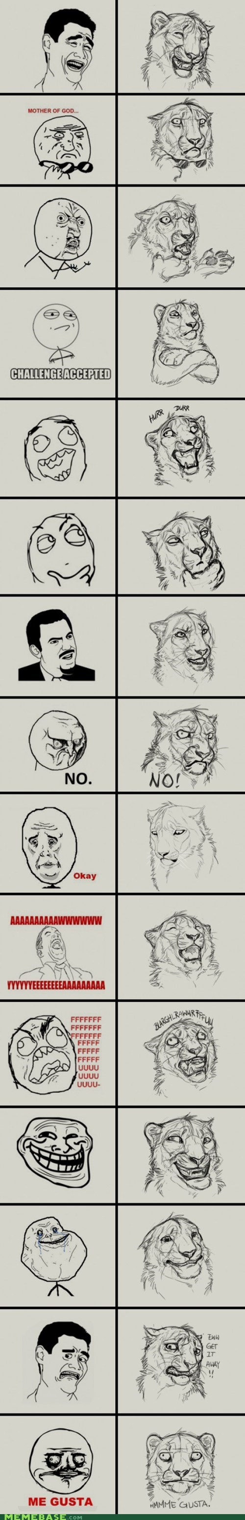 all,faces,huge,jungle,Rage Comics