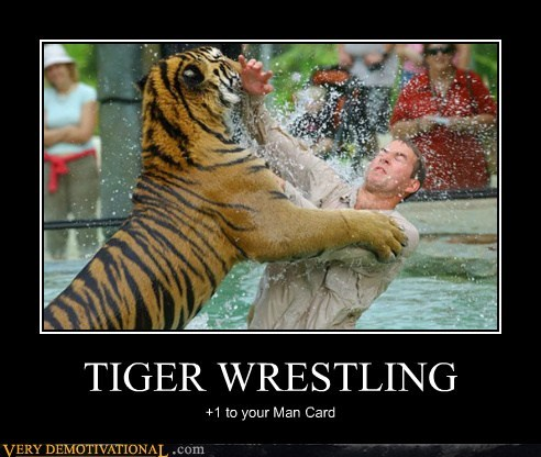 man card Pure Awesome tiger wrestling wtf - 5873223680