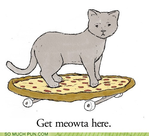 cat,get me out,Hall of Fame,homophones,lolwut,meow,pizza,similar sounding,skateboard