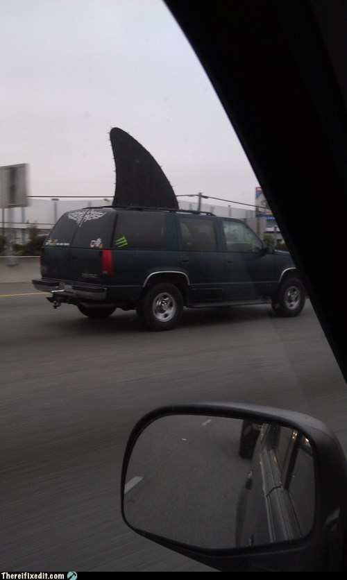shark suv - 5873432064