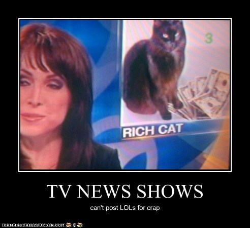 cat demotivational funny news TV - 5874526720
