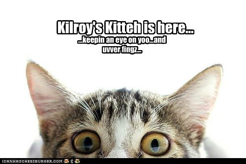 Kilroy's Kitteh is here... ...keepin an eye on yoo...and uvver fingz...