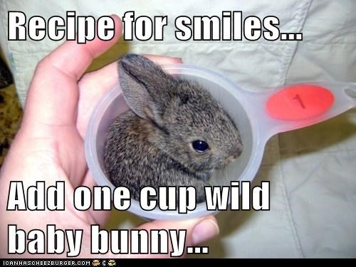 Recipe for smiles...  Add one cup wild baby bunny...