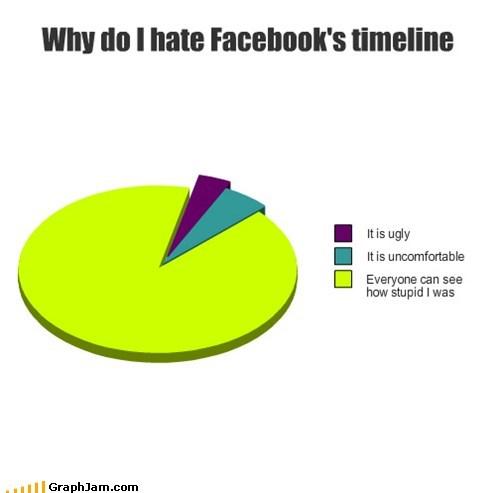 facebook timeline interwebs Pie Chart shame social networking - 5876912128