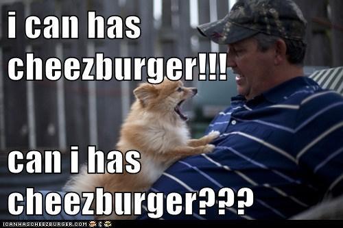 Cheezburger Image 5877415168