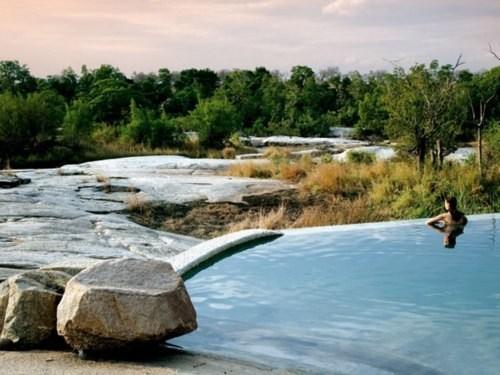 africa national park getaways kruger national park pool South Africa trees - 5877666816