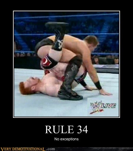 wresting Rule 34 no exceptions meme of 2 dudes body slamming each other in the arena