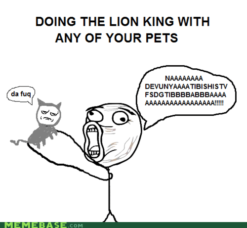 animals,Cats,disney,lion king,real estate,Text Stuffs