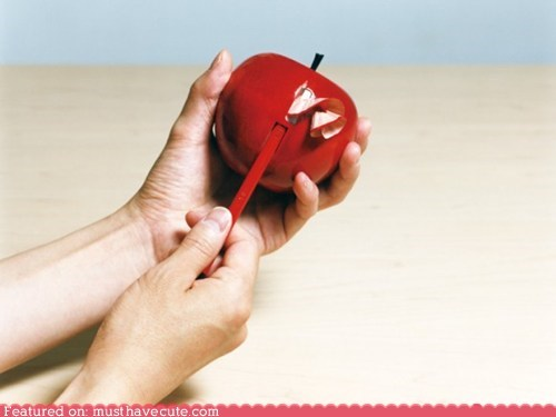 apple,coil,peel,pencil sharpener,wood