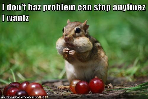 delicious food grapes squirrel yummy - 5878676224