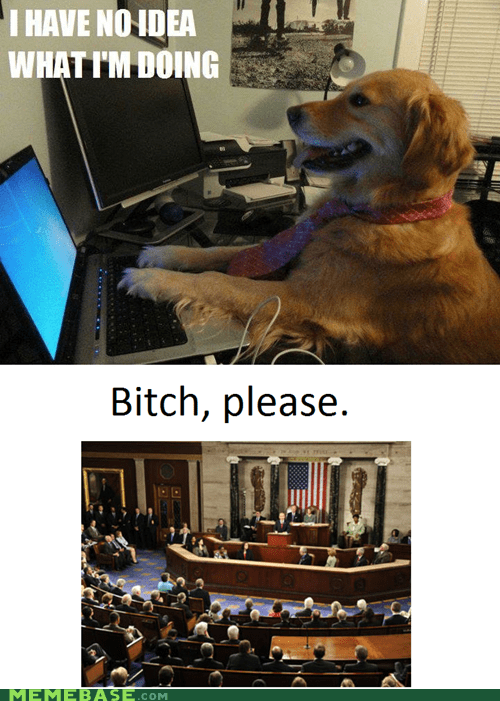 Congress internet Memes no idea - 5879595776