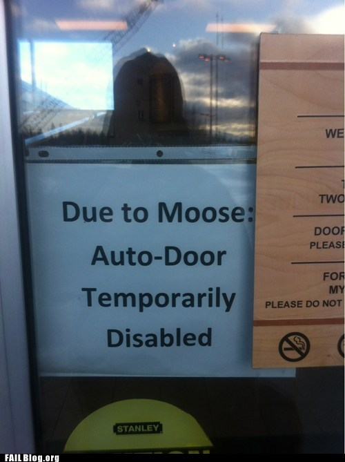 fail nation g rated moose oddly specific oh alaska wtf - 5879857920