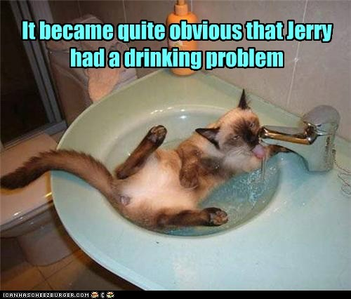 best of the week,cat,drinking,Hall of Fame,Jerry,obvious,problem,pun,sink,water,wet