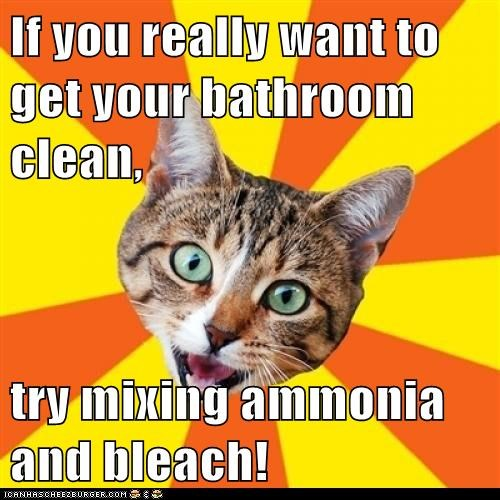 advice,ammonia,bad advice,Bad Advice Cat,bathrooms,bleach,Cats,chemical reaction,clean,cleaning