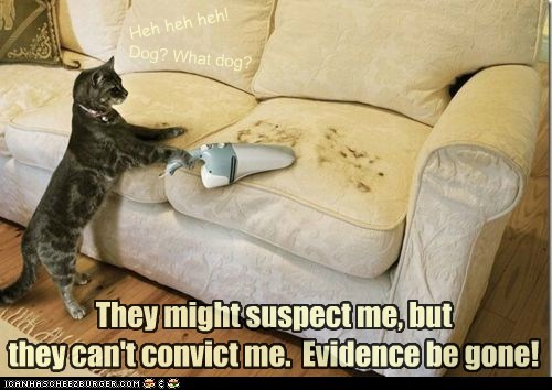 They might suspect me, but they can't convict me. Evidence be gone! Dog? What dog? Heh heh heh!