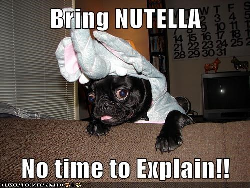 costume,elephant costume,no time to explain,nutella,pug