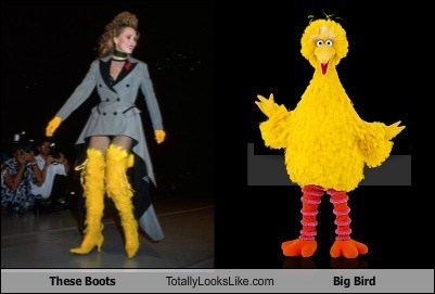 big bird,boots,fashion,funny,Sesame Street,TLL
