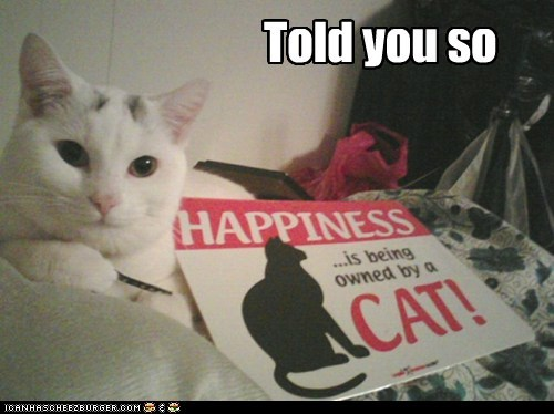 best of the week,cat,fyi,Hall of Fame,happiness,owned,sign,slogan,told you