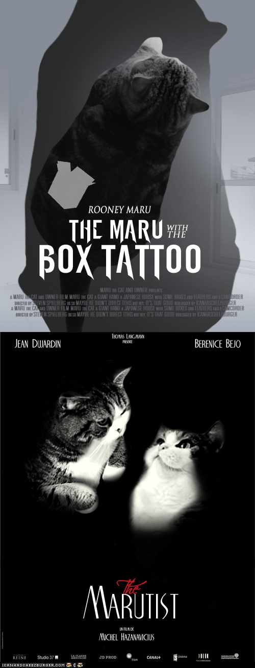 academy awards maru movie posters movies oscars photoshopped the artist The Girl with the Dragon Tattoo - 5882309888