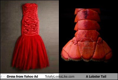 Ad,dress,fashion,food,funny,lobster tail,TLL