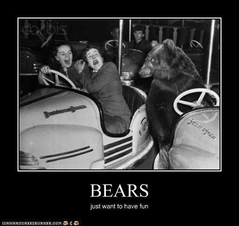 BEARS just want to have fun