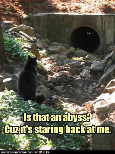 abyss back caption cat Cats dark eyes nietzsche ominous pipe question Staring tunnel - 5883270144