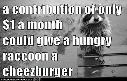 Cheezburger Image 5883431424
