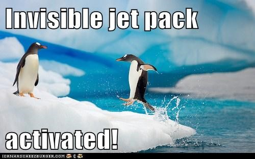 bird,birds,invisible,invisible jet pack,jet pack,penguin,penguins