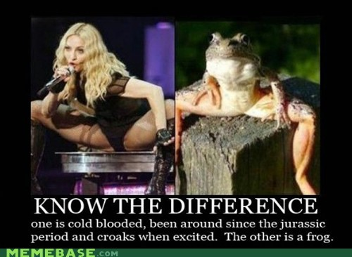 difference frog gross Madonna Memes - 5883942656