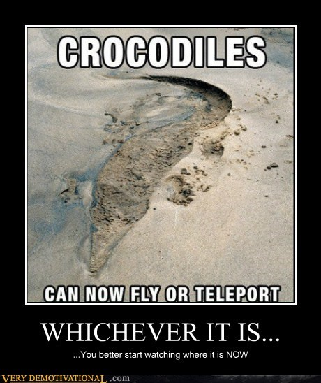 crocodile,fly,teleport,Terrifying,wtf