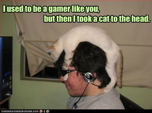 I used to be I used to be a gamer like you, but then I took a cat to the head.