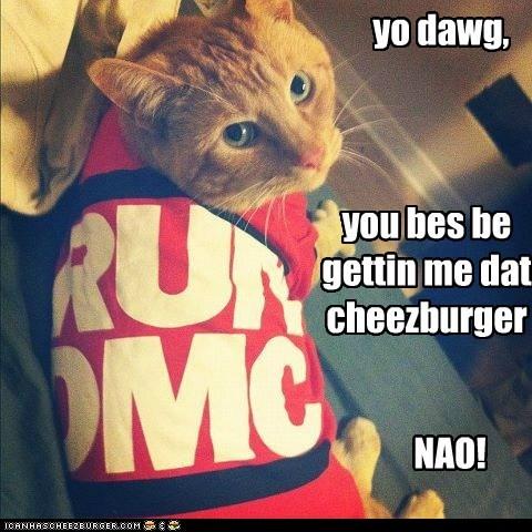 yo dawg, you bes be gettin me dat cheezburger NAO!