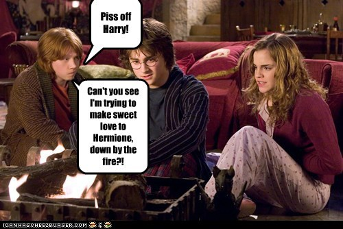 Piss off Harry! Can't you see I'm trying to make sweet love to Hermione, down by the fire?!