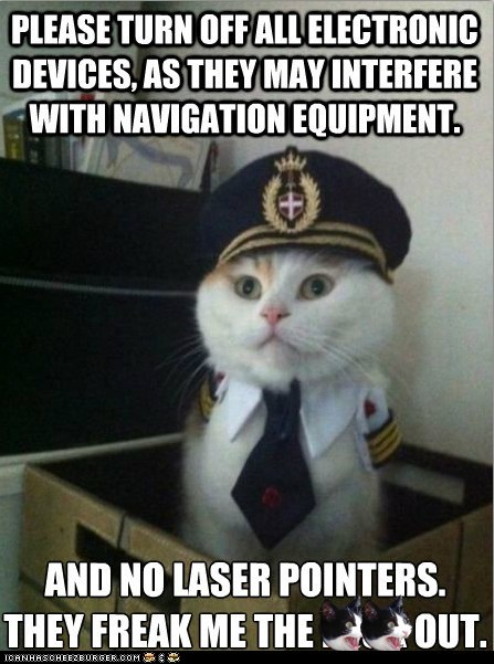 airplanes best of the week Cats electronics flying Hall of Fame laser pointers lasers lolcats pilots rules - 5884839424
