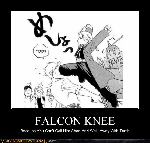 FALCON KNEE Because You Can't Call Him Short And Walk Away With Teeth