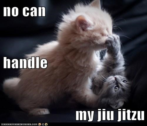 best of the week cant Hall of Fame handle kitten martial arts my no playing - 5887110400
