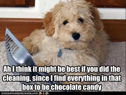 Ah I think it might be best if you did the cleaning, since I find everything in that box to be chocolate candy