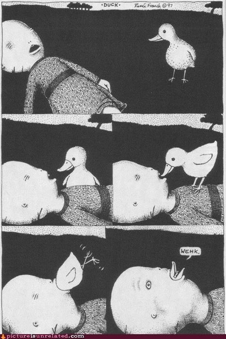 cartoons duck face quack wtf - 5888405504