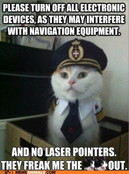 airplanes,Captain Kitteh,captains,Cats,costume,electronics,flying,freak out,laser pointers,planes