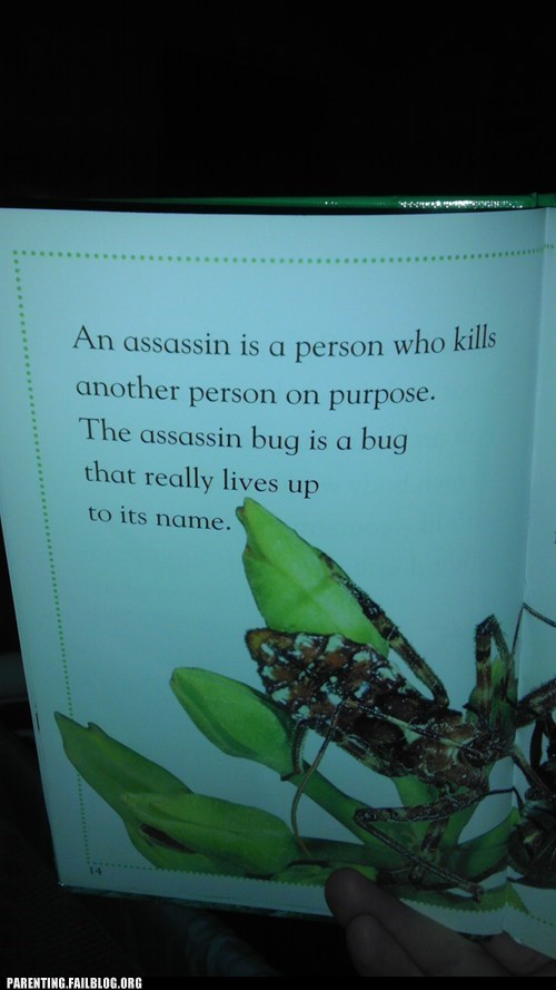 assassin,book,bugs,childrens book