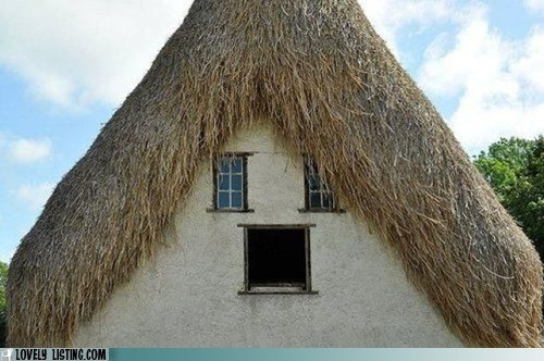 face,hair,kid,roof,thatched,windows