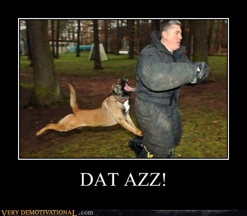 azz bite dogs hilarious ouch wtf - 5889206272