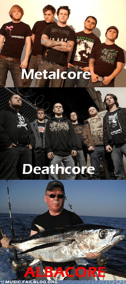 albacore deathcore fishcore metal metalcore - 5889704704