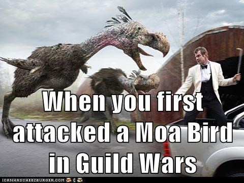 When you first attacked a Moa Bird in Guild Wars