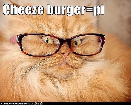 Cheezburger Image 5893402880