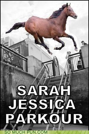 horse,jumping,parkour,sarah jessica parker,similar sounding,surname