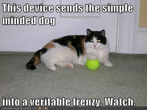 This device sends the simple minded dog into a veritable frenzy. Watch.