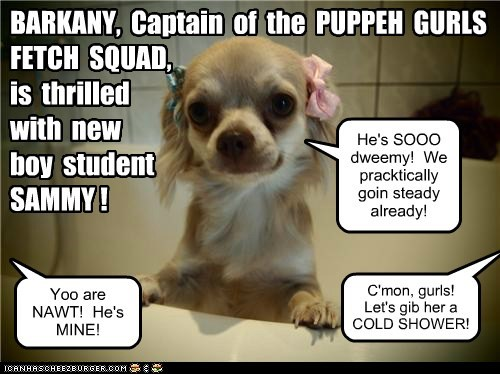 BARKANY, Captain of the PUPPEH GURLS FETCH SQUAD, is thrilled with new boy student SAMMY ! He's SOOO dweemy! We pracktically goin steady already! Yoo are NAWT! He's MINE! C'mon, gurls! Let's gib her a COLD SHOWER!