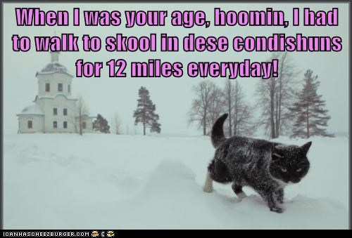 When I was your age, hoomin, I had to walk to skool in dese condishuns for 12 miles everyday!